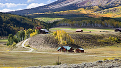 Amazing Fall (valentina425) Tags: colorado rocky mountains landscapes fall autumn aspen pass colorful hiking tree forest wood grass river field mountain animal road sky sheep