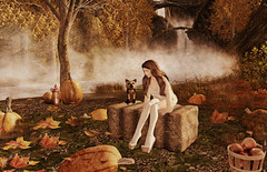 My favorite time of year... (FlashMe Photography) Tags: fall autumn leaves pumpkin sl secondlife mesmericcove