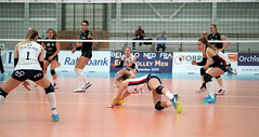 PA170961 (roel.ubels) Tags: sliedrecht sport topsport volleybal volleyball uvc holding graz cev champions league debasis