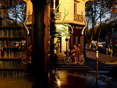 Boulevard Saint-Germain (Calinore) Tags: paris france boulevardsaintgermainreflet reflection matin morning street rue bike velo reflet reflectgion