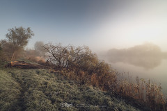 Fog - 29 Oct 2018 - 22 (ibriphotos) Tags: forthvalleycollege morning riverforth fvcsteps frost weather stirling ice