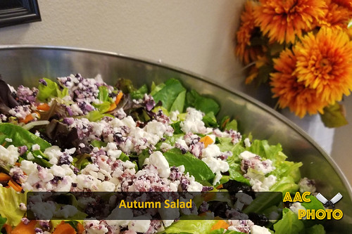 """Autumn Salad • <a style=""""font-size:0.8em;"""" href=""""http://www.flickr.com/photos/159796538@N03/43852551530/"""" target=""""_blank"""">View on Flickr</a>"""