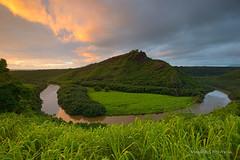 Wailua river sunrise (Maurizio Fontana) Tags: usa hawai kauai fiume river sunrise alba paesaggio landscape verde green acqua water isola island pacifico oceano sky cloud nuvole color colore