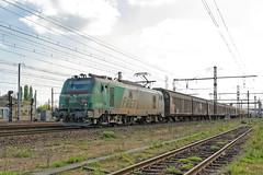[FR-SNCF] BB 27011 M + diffus Bordeaux >>> @Saint-Pierre-des-Corps >>> Le Bourget 13/04/2017 DSC_2466_DxO (yael.flament1) Tags: sncf prima fret freight bb27000 bb27011 bb 27000 27011 diffus mixed trafic saintpierredescorps saint pierre des corps