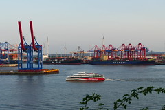 Zurück - Back (ivlys) Tags: hamburg hansestadt hafen harbour containerhafen containerhabour schiff ship helgoline elbe fluss river landschaft landscape ivlys