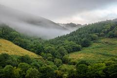 Early morning trucking. Run back from Morrisons Store in Aberystwyth (carlredvee) Tags: aberystwyth fog hills