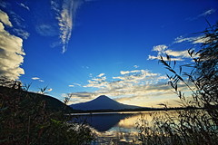 Lake Tanuki of the morning (ULTRA Tama) Tags: lake tanuki morning mtfuji mtfujiwhc japan shizuoka fuji todays dayliphoto instadaily photogenic igjapan loversnippon worldcaptures flickrfriday welovef september 2018 worldheritage tabijyo genicmag retripjapan retripshizuoka explorejapan traveljapan radiof artofimages ftimes genictravel geniclife genicblue genicjapan genicphoto genictown genicsummer tabijyosummer tabijyomaptwn tabijyotravel