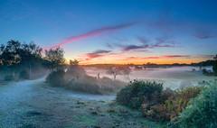 The Filling Of The Bowl (nicklucas2) Tags: landscape newforest seasons autumn bracken grass mist cloud contrail