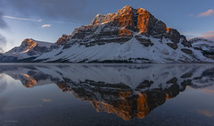 Bow Lake at Dawn (Rolf M B) Tags: improvementdistrictno09 alberta canada ca bow lake banff ice fields parkway park national mountain snow reflection water cloud sky sunrise blue glacier trees