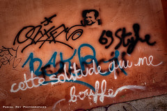 _DSC4704 (Pascal Rey Photographies) Tags: lyon lugdunum aurorahdr aurora skylum streetart street inthestreets strasse murs murales muros murale fresquesmurales peinturesmurales écritsurlemur walls wallpaintings walldrawings writinonthewall arturbain art artgraphique artabstrait urbanart urbanphotography urbaines graffitis graffs graffik graffiti sprayart spray stencils stencil papiercollé pastedpaper pascalrey nikon d700 dada dadaisme surrealiste