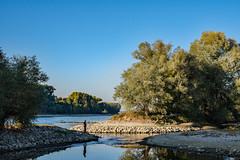 20181015-K32E7506 (AldAsAck1957) Tags: rhine karlsruhe germany low water sunset fall colour