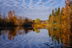 Вырица. Ленобласть (artivspb) Tags: пейзаж landscape river byrica вырица fujifilm xt2 spb russia