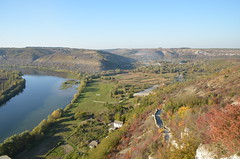 DSC_5406 (Sector2000) Tags: осень золотаяосень парк природа листья деревья automn выходной лес парки