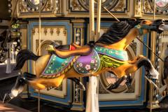 Carousal (DJ Wolfman) Tags: kemah houston tx carousal horse ride amusement park olympus omd em1markii zd 12100f4zuiko