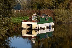 River Thames Bray Maidenhead Cliveden 21 October 2018 094 (paul_appleyard) Tags: river thames cliveden october 2018 autumn fall glorious day leaves colours colors reflections reflected