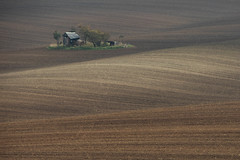 Moravian landscape (s_andreja) Tags: moravia landscape paysage nature field