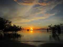 alter-do-chao-coucher-soleil-2 (terraexperiences) Tags: amazontour amazonia amazonie amazon jungle selva terranossa nordeste northeastern brazilnordeste