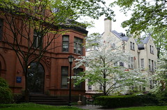056-DSC_1393 (Lohrovi) Tags: newhaven connecticut america usa may 2018 travelling traveling city yale university commencement