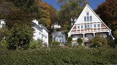 Häuser in der Herbstzeit (outbreak998) Tags: canon eos r 2470mm f28 169 4k 3840x2160 adobergb hamburg blankenese herbst häuser baum