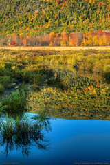 Autumn in Acadia (Greg from Maine) Tags: autumn foliage acadia acadianationalpark reflection fallseason barharbor barharbormaine seasons autumncolors water dorrmountain mountain greatmeadows