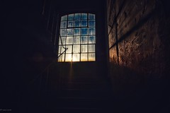 Windows... (hobbit68) Tags: windows fujifilm xt2 fenster schatten shadows treppenhaus treppen steps sonne sommer sun sonnenschein sunset sunshine sonnenuntergang geländer industriegebiet industry industrie blue blau fensterscheiben glas dark darkness