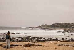 _DSC3940 (@camilografo) Tags: isla negra algarrobo chile