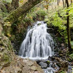 Glen Mary Falls, Lake District (Jill Hempsall) Tags: walkinglakedistrictwaterglenmaryfallswaterfalls tom gill falls