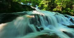 Mystical Wonder (Chizuka2010) Tags: waterfall painterly long exposure flow fluidité mystical cascades cascading forest quebec canada river rivière creek ruisseau lacducerf stones pierres cascade copyrightluciegagnon