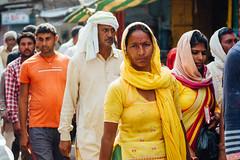 Pedestrians in Uttar Pradesh, India (AdamCohn) Tags: adam cohn uttar pradesh india mathura vrindavan holi pilgrim pilgrimage pilgrimmage pilgrims saree sari woman wwwadamcohncom adamcohn uttarpradesh isapurbanger