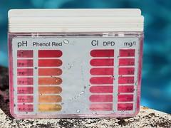 Pool tester (phileveratt) Tags: macromondays measurement dpdtest chlorinetest phtest pooltest canon eos77d efs18135