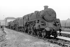 Riddles 5MTs at Tyseley (Garter Blue) Tags: steam loco engine 2a tyseley br 1966 1960s pannier tank birmingham black white fiilm 35mm fed zork caprotti riddles 5mt
