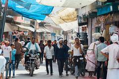 Motorcycle & Pedestrians, Uttar Pradesh India (AdamCohn) Tags: adam cohn uttar pradesh india mathura vrindavan holi pilgrim pilgrimage pilgrimmage pilgrims wwwadamcohncom adamcohn uttarpradesh isapurbanger