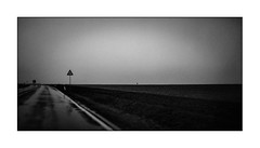road to emptiness (Armin Fuchs) Tags: arminfuchs autumn october würzburg landscape street roadsign sky field tree lonely empty trist tristesse light exhibition stevemccurry niftyfifty horizon grain diagonal lost