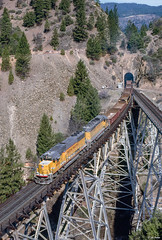 UP 6010 East at Keddie, CA (thechief500) Tags: featherriverroute railroads up