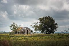 Abandoned Barn - East of Thrall, Texas (lonestarbackroads) Tags: abandoned farmhouse house texas tx unitedstates us williamsoncounty williamsoncountytexas williamsoncountytx