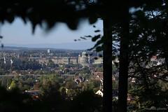 Bern hinter dem Wald