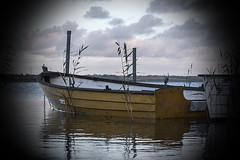 Glenstrup Sø - Båd (Walter Johannesen) Tags: glenstrup sø landskab eftermiddag vand både joller