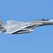 493rd FS F-15C 84-0015