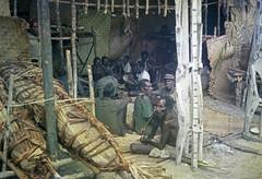 Album1-24-001b (Stichting Papua Erfgoed) Tags: mimika kamoro karapao stichtingpapuaerfgoed
