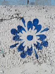 IMG_4602 (emilyD98) Tags: fleur flower street art insolite rue mur wall bleu stencil pochoir urban exploration