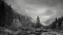Wenatchee River (MBates Foto) Tags: availablelight blackandwhite daylight existinglight forest leavenworth monochrome nikkorlens nikon nikond810 nikonfx outdoors parksandrecreation river washington wenatchee unitedstates elitegalleryao bestcapturesaoi
