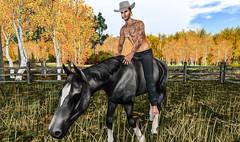 Bareback riding (jc.underwood) Tags: countryside cowboy hat horse barebackriding grass trees fence sky farm tattoo atletic barefoot deadwool farmlife secondlife