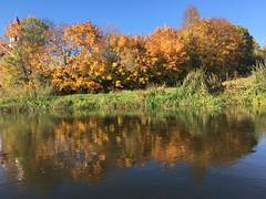 Rzeka Narew (basiamarcisz) Tags: podlasie polska woda water river rzeka narew