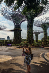 Gardens by the Bay XXII (emptyseas) Tags: gardens by bay singapore emptyseas nikon d800 supertrees walkway ocbc skyway ella