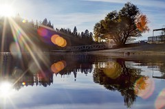 I remember how to daydream (PeterThoeny) Tags: pinemountainlake pinemountainlakelodge groveland california tree forest water landscape shore shoreline lake marina day cloud outdoor reflection waterreflection lensflair flair symmetry sony a7 a7ii a7mii alpha7mii ilce7m2 fullframe vintagelens dreamlens canon50mmf095 canon 3xp raw photomatix hdr qualityhdr qualityhdrphotography fav100 sky pier