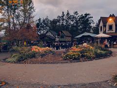 evening roads (SetsuntaMew) Tags: parenfaire renfaire faire festival pennsylvania pa fall autumn