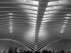 N Y Oculus (dweible1109) Tags: cellphonephoto iphone building blackwhite bw monochrome oculus newyork ny