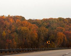 Rightwards (stephen.rollick) Tags: digital digitalphotography digitalphoto canon 20d landscape landscapephotography autumn fall seasons midwest trees treeline atmosphericperspective cloudy overcast highwayscenery forest woods pennsylvania