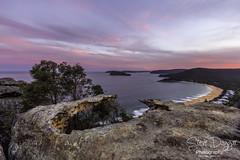 0S1A1823 (Steve Daggar) Tags: pearlbeach nswcentralcoast gosford woywoy landscape sunset seascape brisbanewaternationalpark