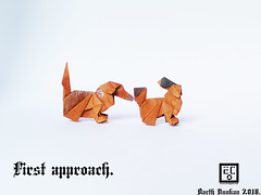 First approach - Barth Dunkan. (Magic Fingaz) Tags: anjing barthdunkan chien chó dog hond hund köpek origami paperfolding perro pies пас пес собака หมา 개 犬 狗